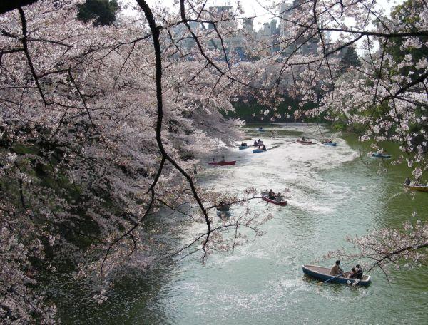 kitanomaru park in Tokyo