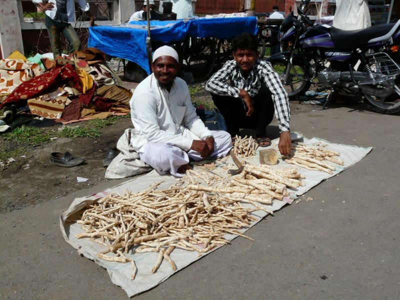 tooth paste (root) in India