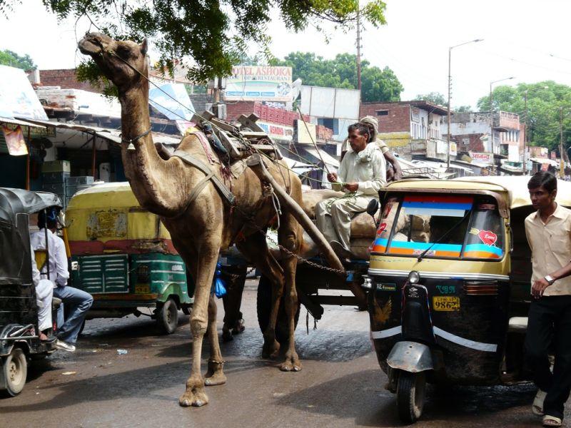 street capture in Agra