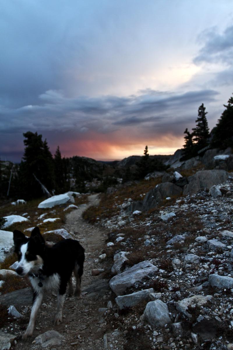 Lost Dog Medicine Bow Peak Laramie Wyoming Apline