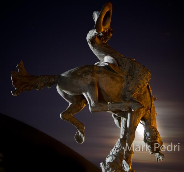 University of Wyoming UW Bucking Horse Wyoming