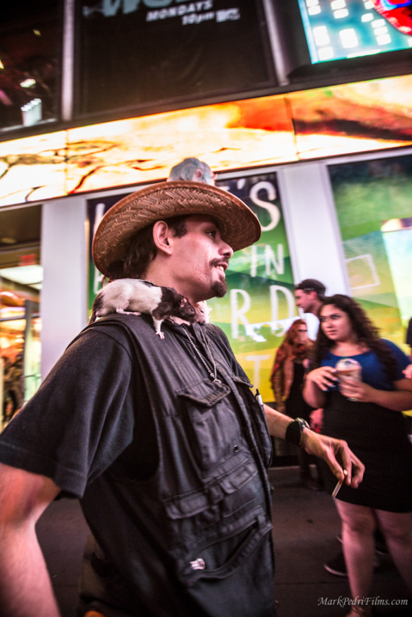Rats, NYC, Times Square