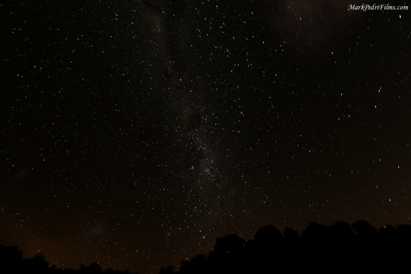 New Zealand Night