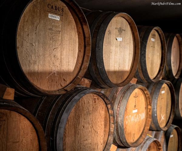 Wine Barrels, wine cellar