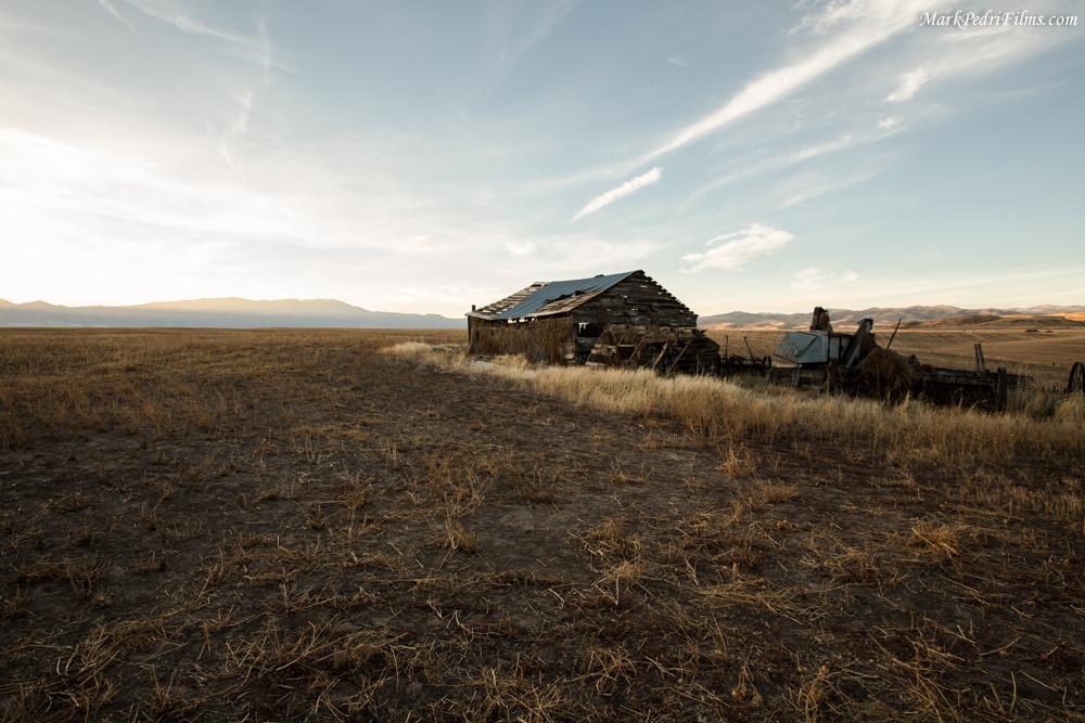 Utah, Barn, Tree, Old, Sun