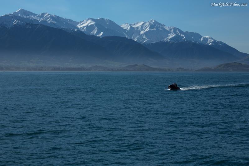 NZ, Boat, Ocean