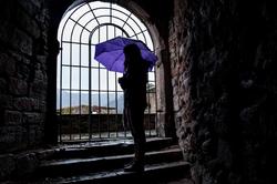 Heidelberg, Schloss, Castle, Rain