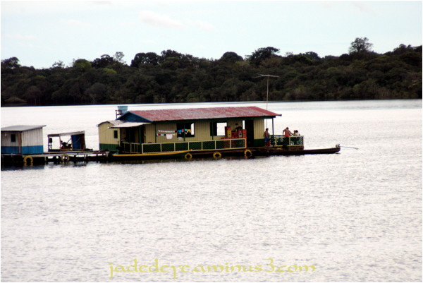 Floating Bar on the Rio Negro