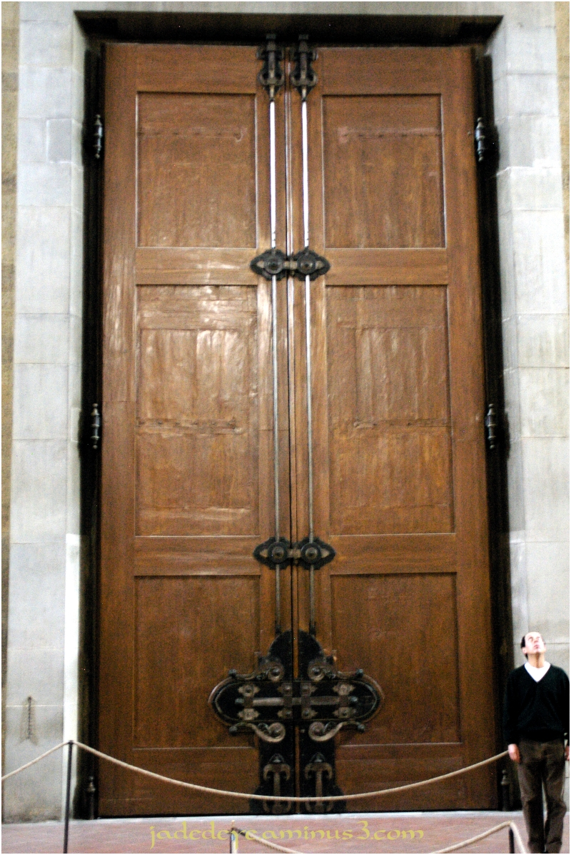 Doors of Italy - Florence