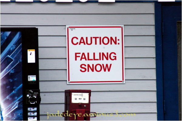 Signs #3 - Stating the Obvious