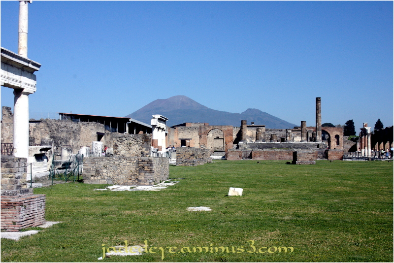 In the Shadow of Mt Vesuvius