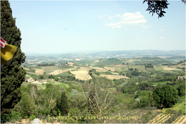 Tuscan Hills #1