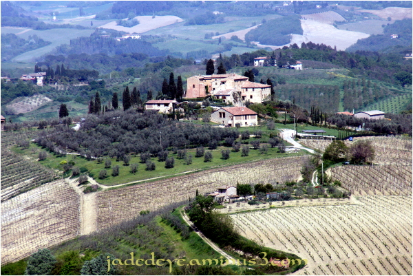 Tuscan Hills #2