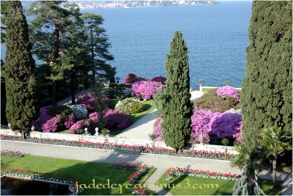 Garden View #3