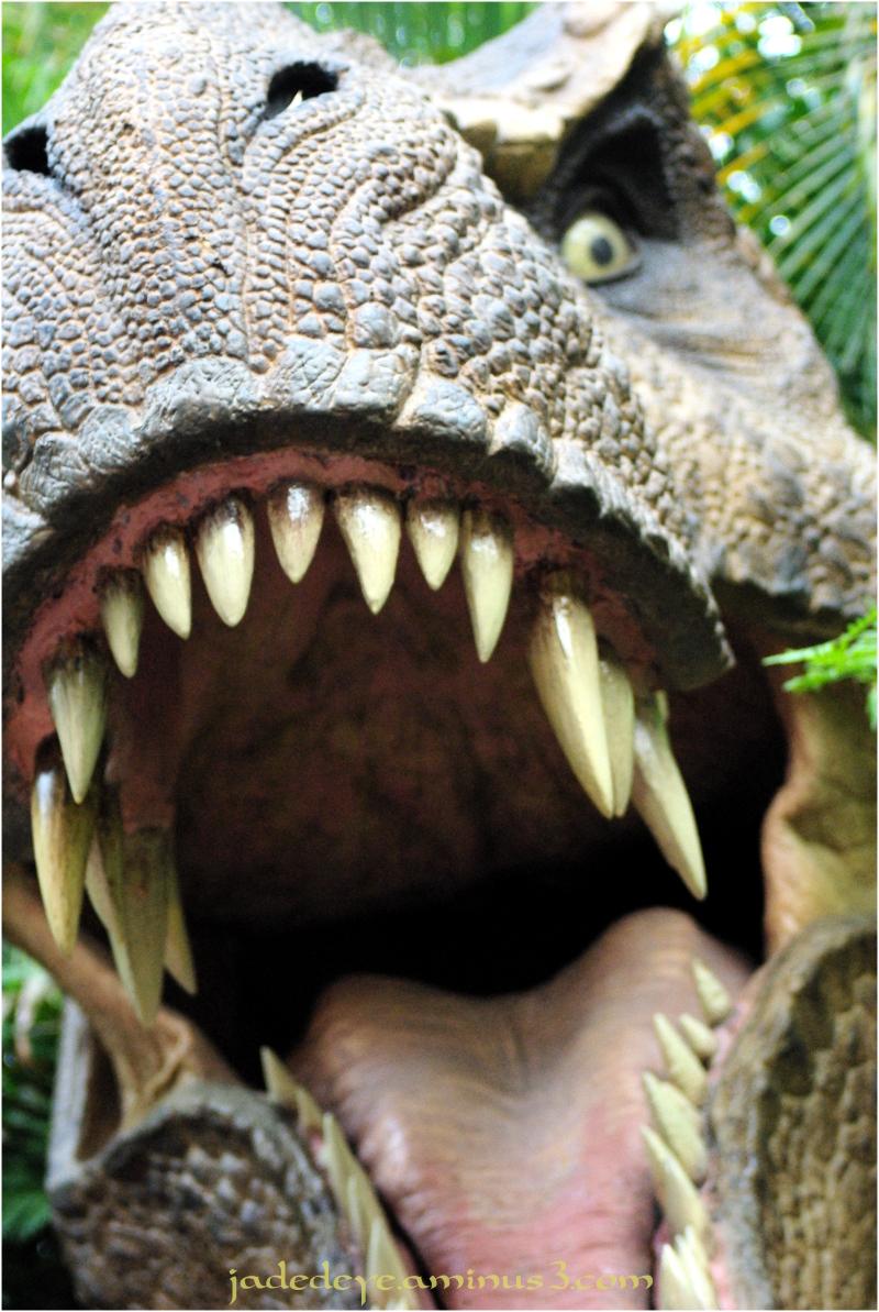 T Rex #2