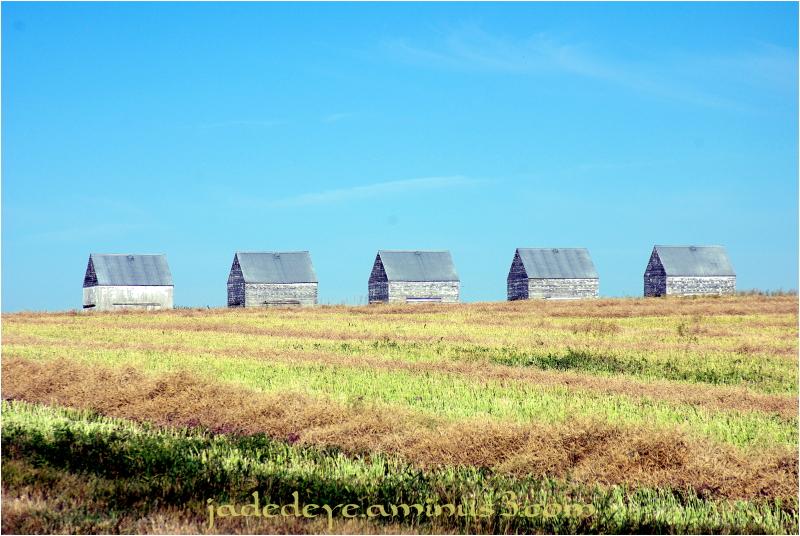Prairie Barns