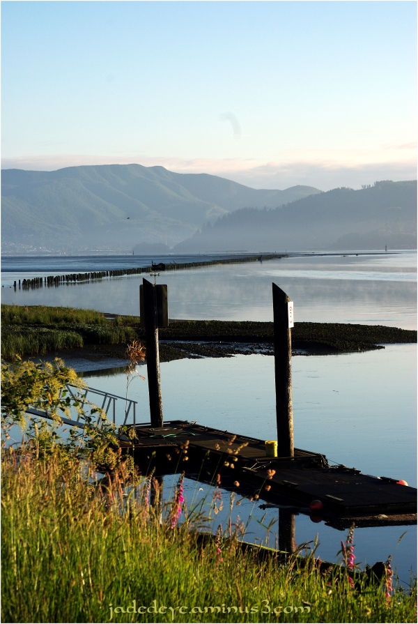 Dawn On Tillamook Bay #2
