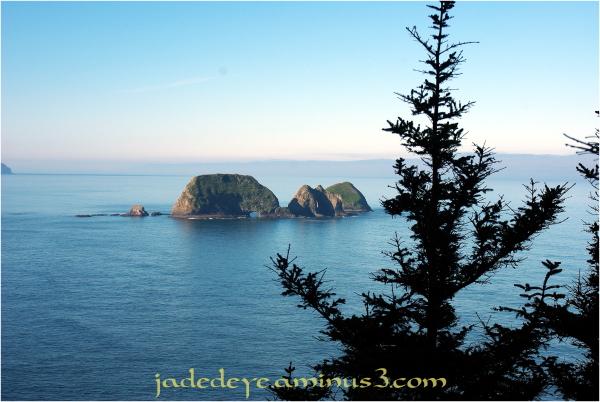 Three Arch Rocks National Wildlife Refuge #3