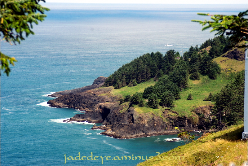 Cape Foulweather #2