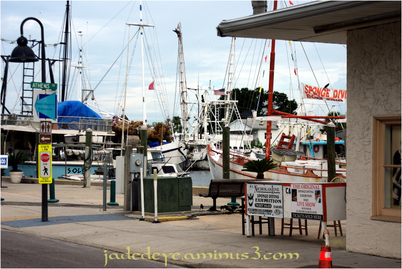 Tarpon Springs Dockside