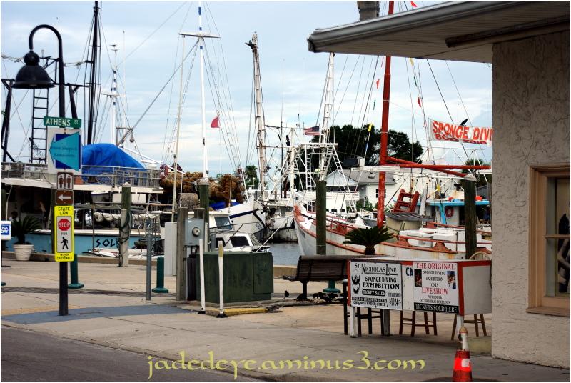 Tarpon Springs Dockside