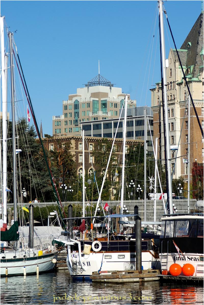 Victoria Harbour Marina