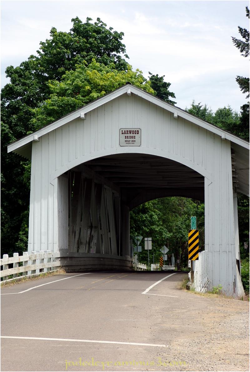 Larwood Bridge #1