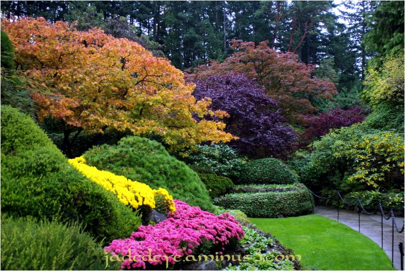 Sunken Garden #5