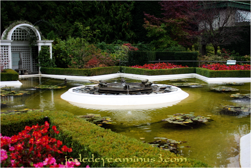 Star Pond