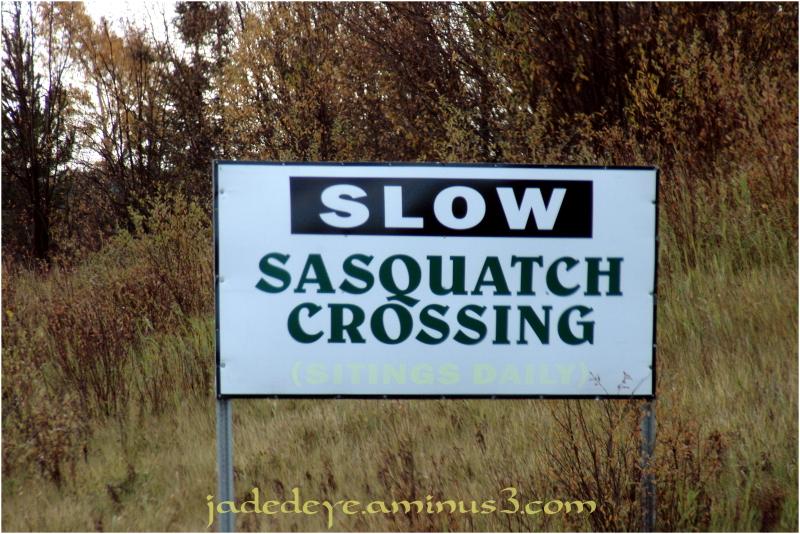 Sasquatch Crossing!