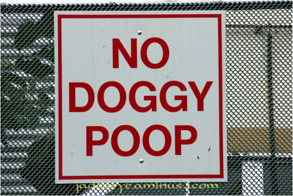 No Doggy Poop!!!