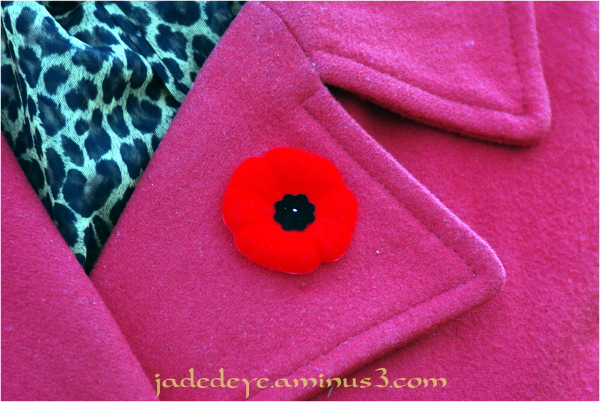 Remembrance Day - Lest We Forget!!