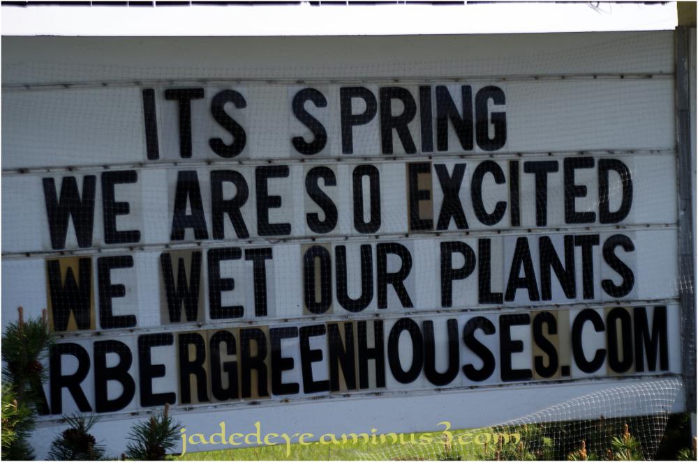 It's Spring!!