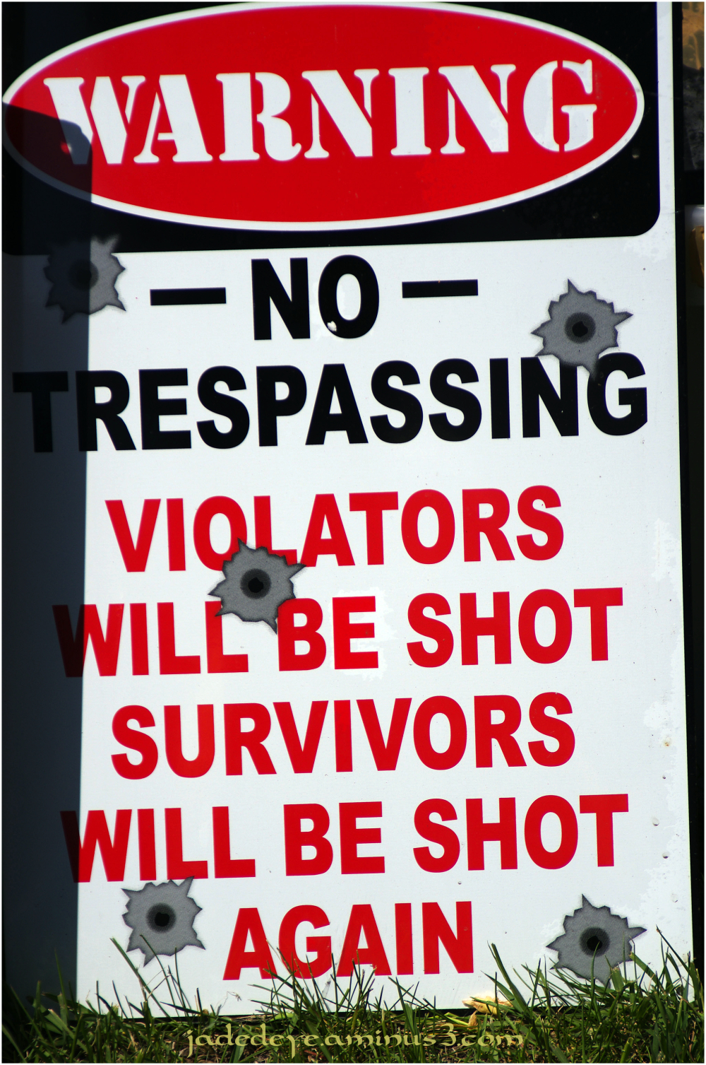 Violators Will Be Shot!