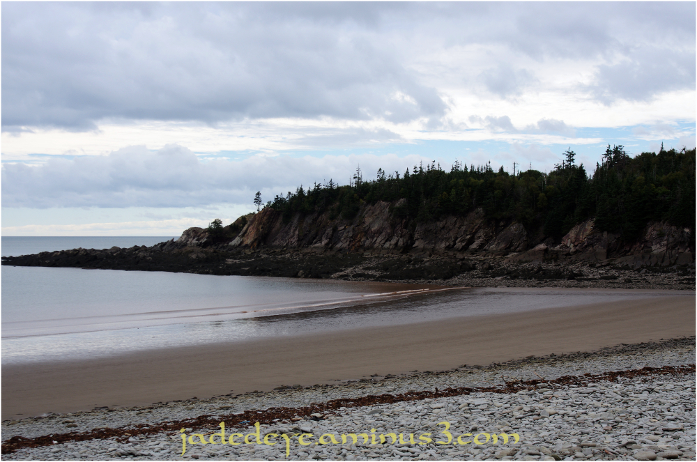 Fundy Coastal View