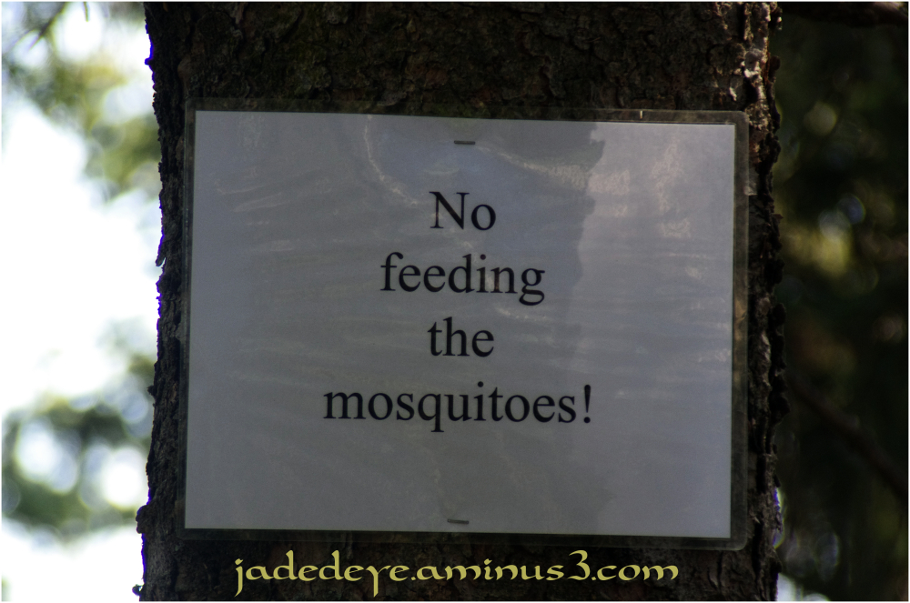 Don't Feed The Mosquitos