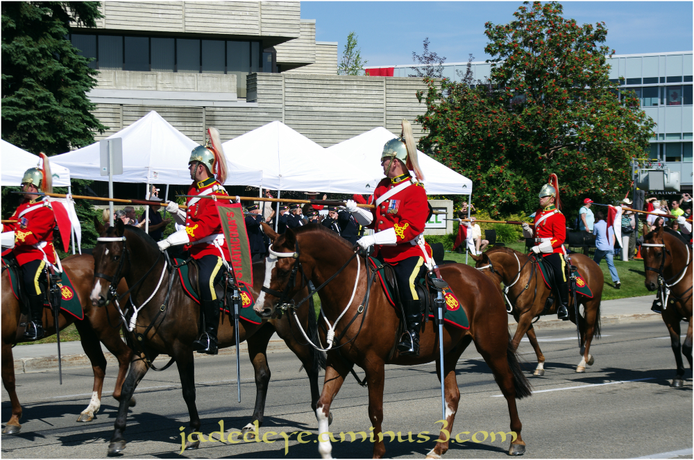 The Mounted Unit III