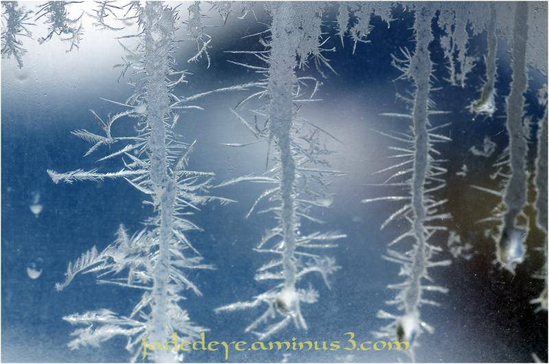 Ice Crystals III