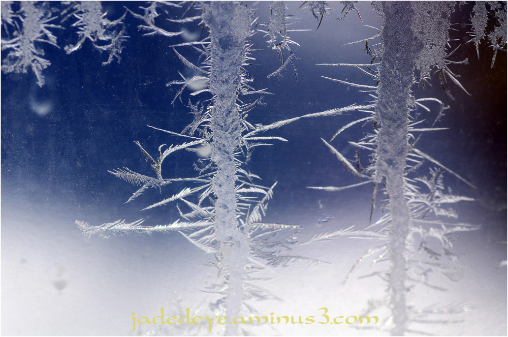 Ice Crystals IV