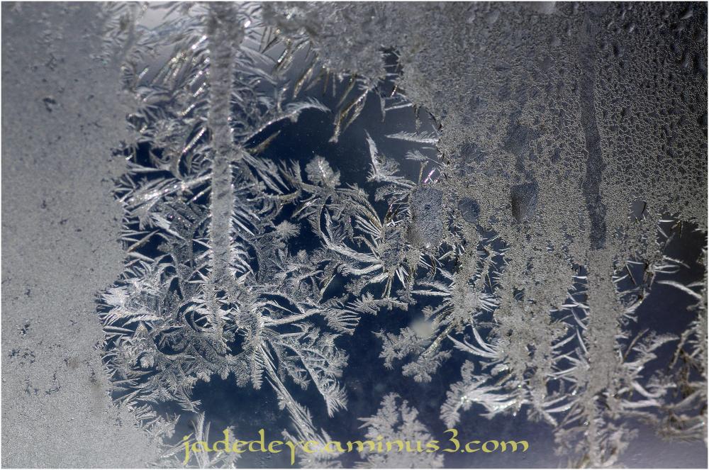 Ice Crystals VII