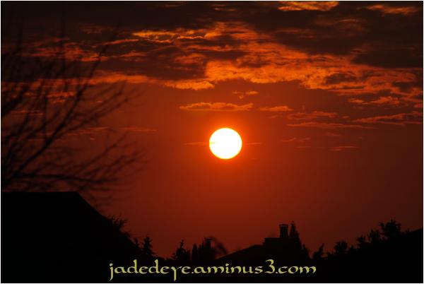 Sunset #13