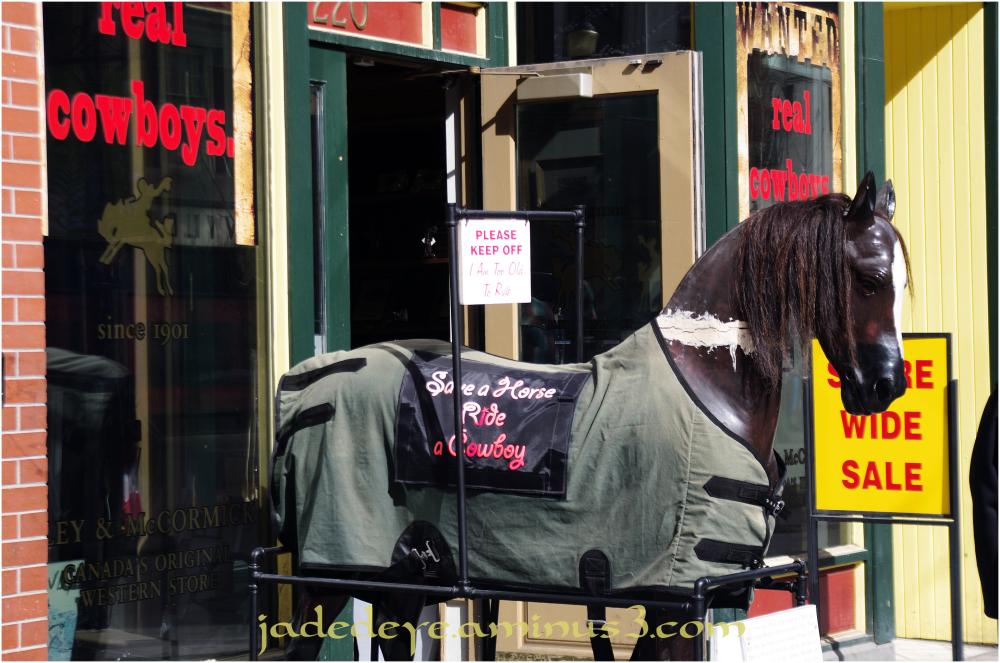 Save A Horse....Ride A Cowboy!