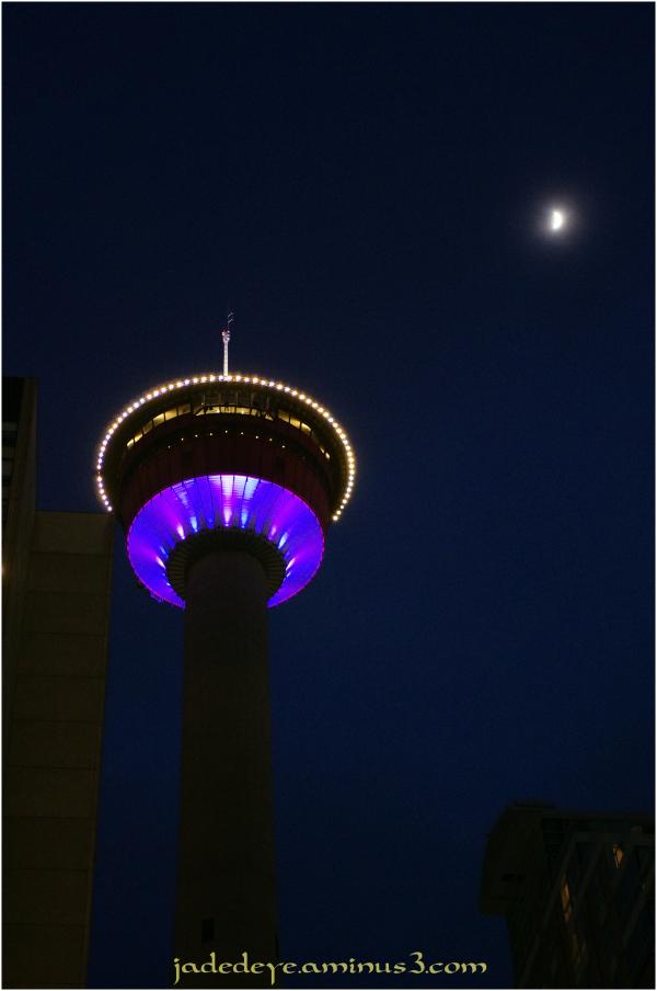 Calgary Tower - Night View