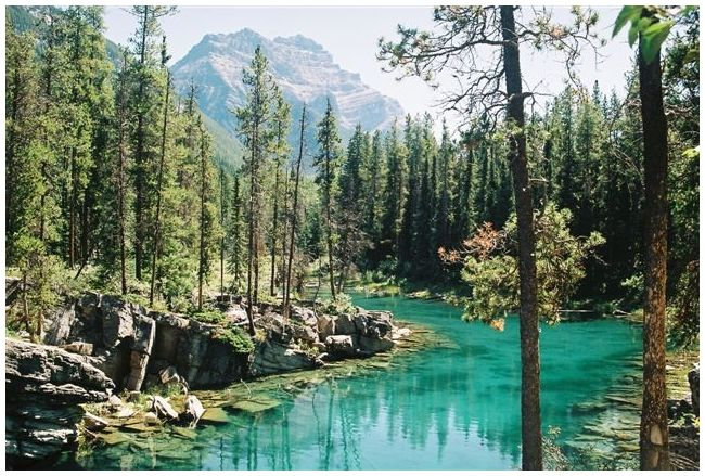 Alberta Glacier pond, Rocky Mountains