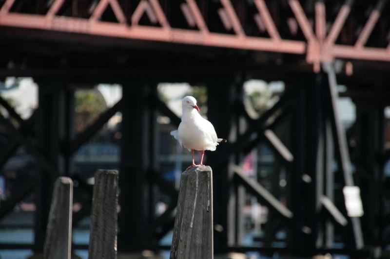 Alone, standing...
