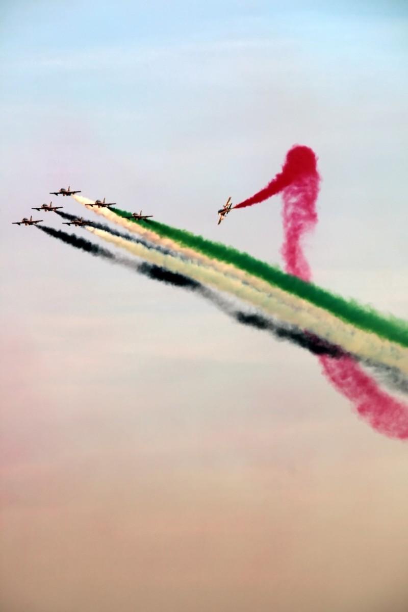 Dubai Air Show 19