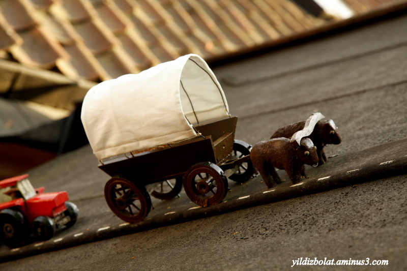 Mini carriage with mini animals...