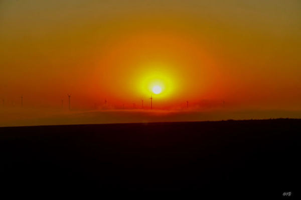 Sunrise in the windmill park