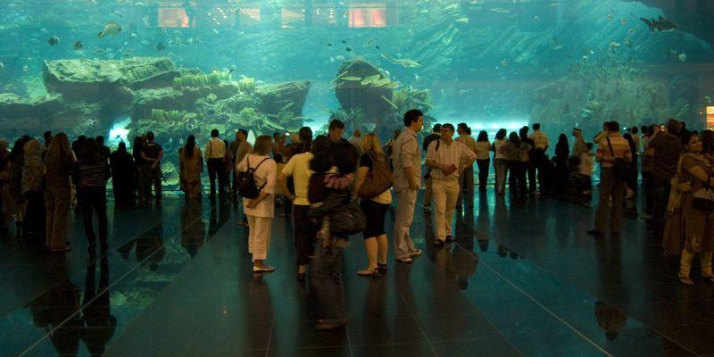 Dubai Aquiarium