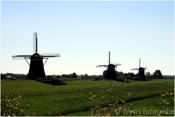 De Drie Molens - Stompwijk (NL)